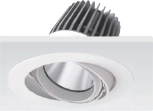 LED Downlight Reflektor-adustable-LP-40DL10 special meat / fruit